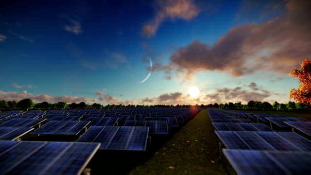 Solar pannels, timelapse night to day, aerial view video