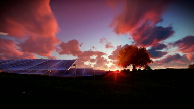 Solar pannels, timelapse sunrise video