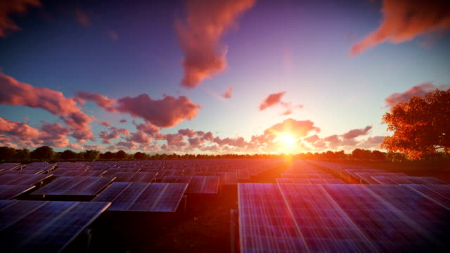 Solar pannels, timelapse sunset, aerial view