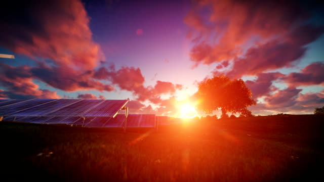 Solar pannels, timelapse sunset video