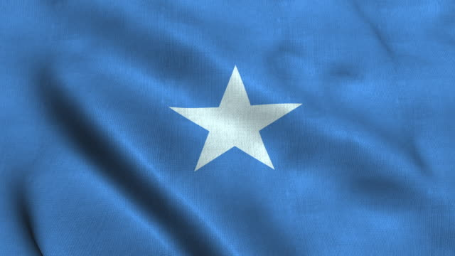 Somalia flag waving in the wind. National flag the Federal Republic of Somalia Somalia flag waving in the wind. National flag the Federal Republic of Somalia. 3d render. seamless loop horn of africa stock videos & royalty-free footage