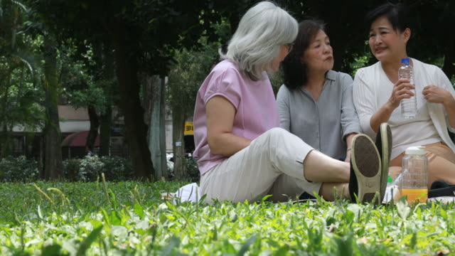 Some Elderly Taiwanese Ladies Talking While Picnicking Together
