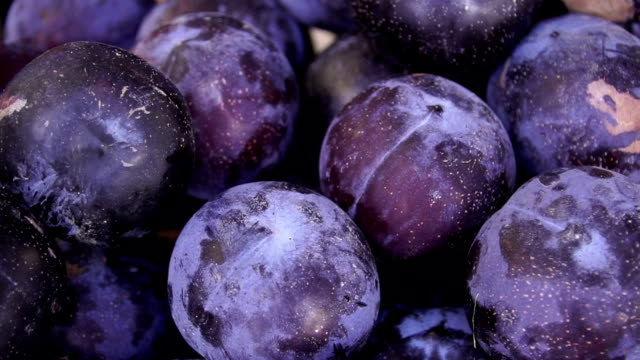 Some Plums rotating on a slate slab Ripe plums.Full hd video.Slow motion plum stock videos & royalty-free footage