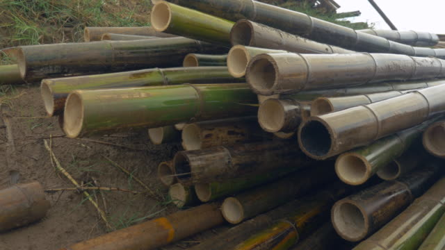 Some rain hits bamboo poles piled up on the riverbank at work-site