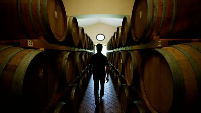 sommelier in vineyard pouring italian white wine in glass in slow motion - azienda vinicola video stock e b–roll