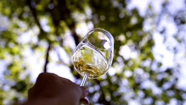 Sommelier rotating the white wine glass with sun rays through green leaves background video