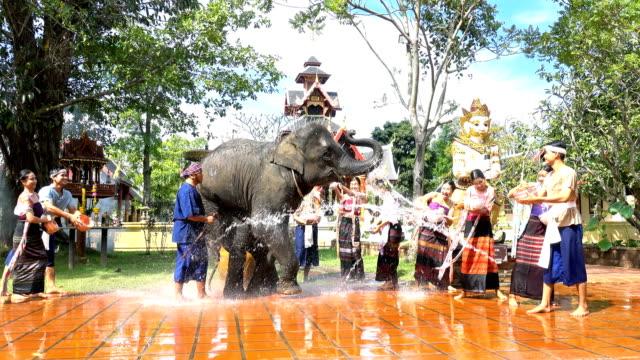 vídeos de stock, filmes e b-roll de festival de songkran 4k - mulheres bonitas e homens desgaste traditionnel tailandês traje espirrar água com elefante no fundo do templo - ano novo budista