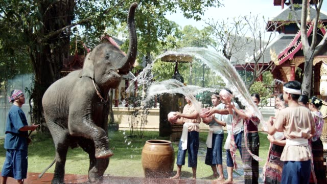 Songkran, Playful splashing water with elaphant