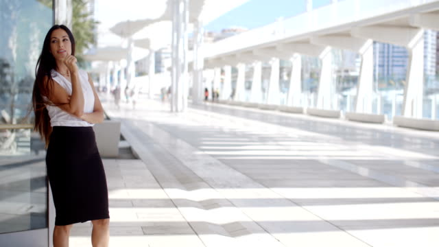 Sophisticated Business Woman on Promenade video