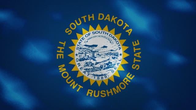 South Dakota dense flag fabric wavers, background loop
