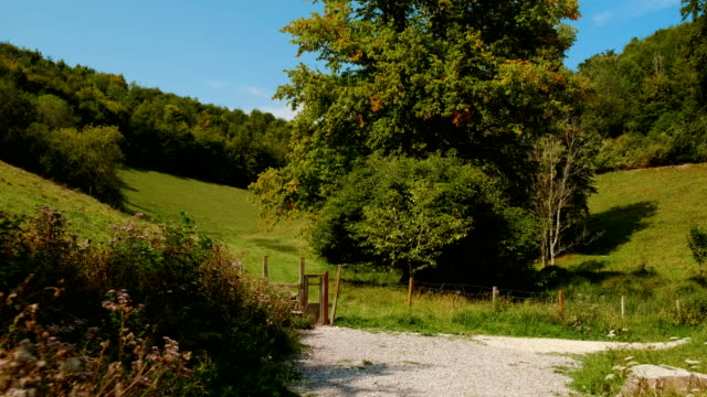 south downs national park, west sussex, inghilterra, regno unito - south downs video stock e b–roll
