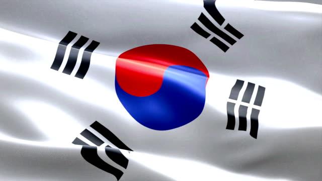 south korea flag waving texture fabric background, crisis of north and south korea, korean risk war video