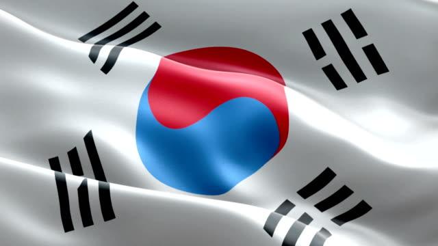 vídeos de stock, filmes e b-roll de bandeira sul-coreana - coreia