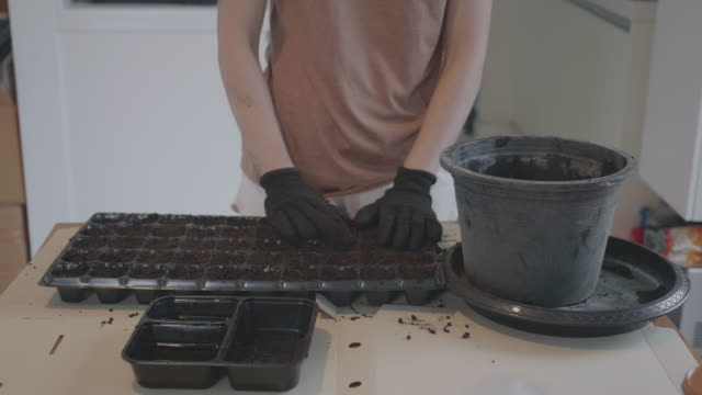southeast asian woman planting at home for in-house garden - gardening video stock e b–roll