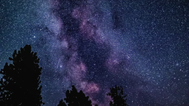 vidéos et rushes de space motion time lapse of milky way galaxy stars over silhouette tree show space motion time lapse of milky way galaxy stars over silhouette tree show space time lapse of milky way galaxy stars over silhouette tree show space time lapse - violet