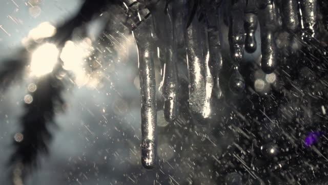 glittrande frysta istappar på fir grenar under kraftiga regn mot glittrande soliga conifer bakgrund i slow motion. - icicle bildbanksvideor och videomaterial från bakom kulisserna