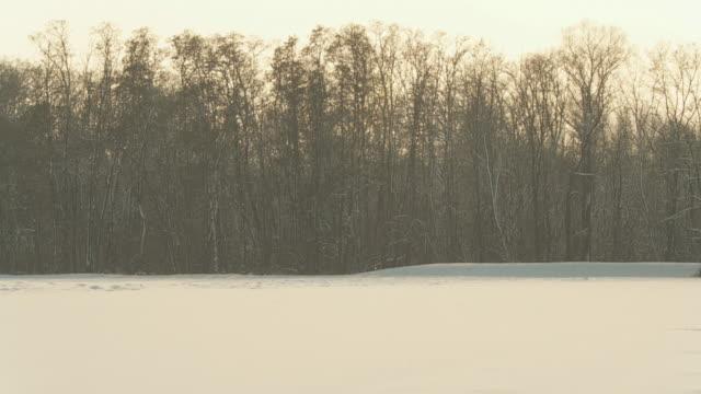 hd slow motion: sparkling snowfall - djupsnö bildbanksvideor och videomaterial från bakom kulisserna