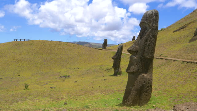 DRONE: Spectacular view of moai statues scattered around the green meadows. video