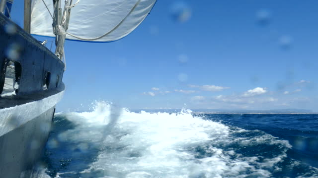 Speed on all sails video