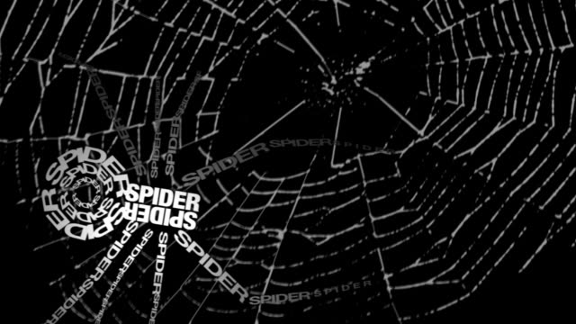 Spider made of words video