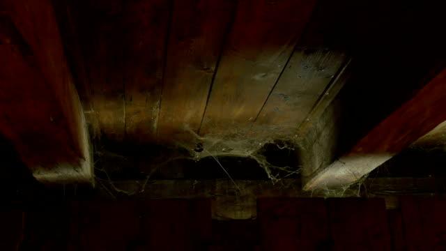 spinnennetz im dachgeschoss - dachboden stock-videos und b-roll-filmmaterial