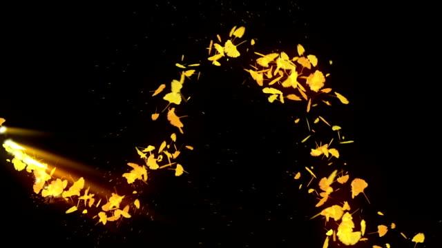 自旋秋天的葉子,銀杏,cg 動畫 - 銀杏樹 個影片檔及 b 捲影像