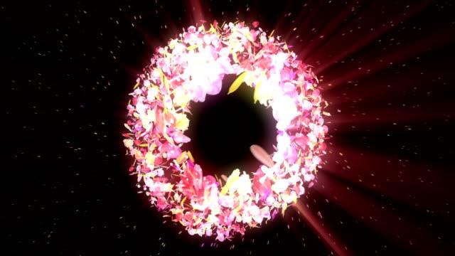 vídeos de stock e filmes b-roll de spin of colorful petals,cg animation,particle - flower white background