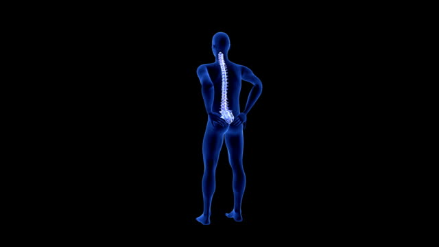 Spine Pain. Blue Human Anatomy Body 3D scan render on black background video