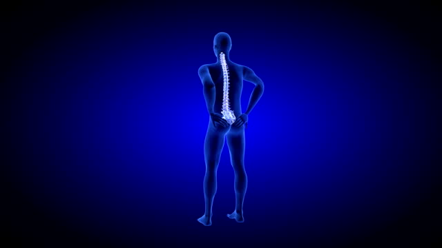 Spine Pain. Blue Human Anatomy Body 3D scan render on blue background video