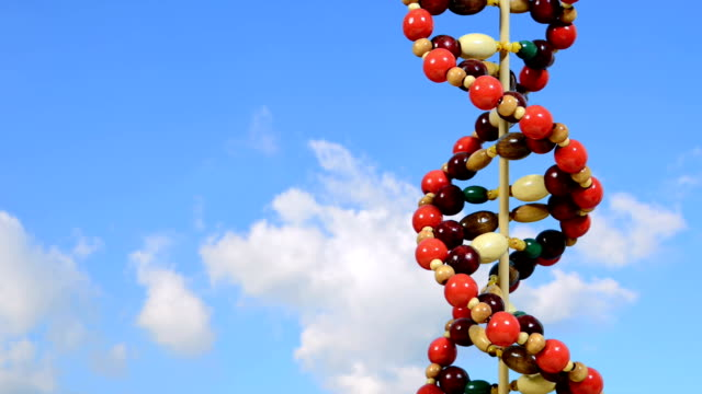 TIMELAPSE: Spinning DNA against clouds video