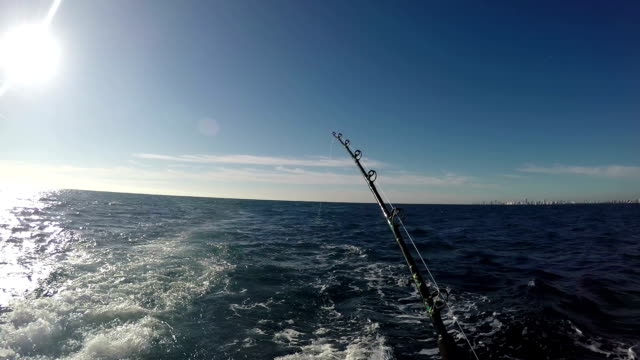 Spinning rods are on a boat. Around the blue water Spinning rods are on a boat. Boat in motion.Water splashing .Around the blue water fishing rod stock videos & royalty-free footage