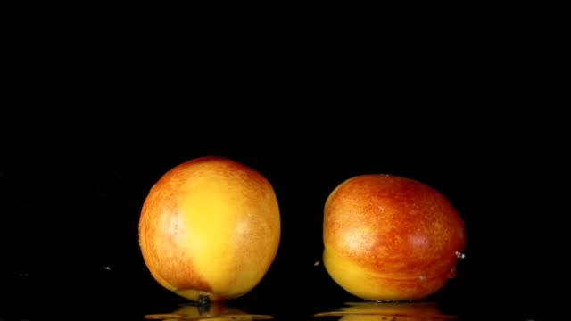 SLOW: A splash - Two nectarines falls on a black background video