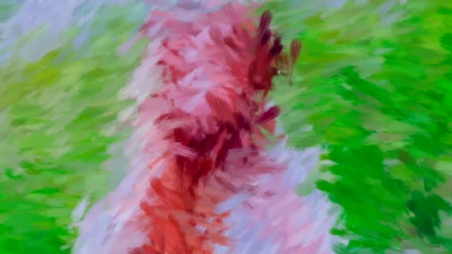 Splashes Of Color Slowly Evolving Into Digital Painting Of Woman video