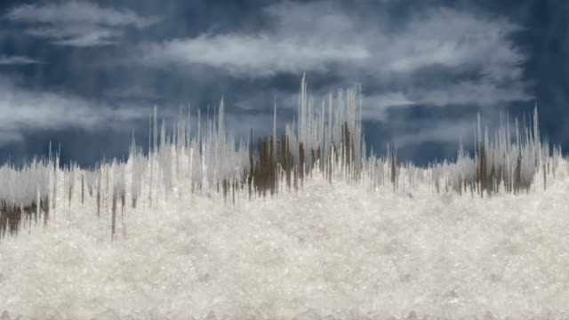 Splintery Wintery Tree Line Scrolling Against a Cold Sky video