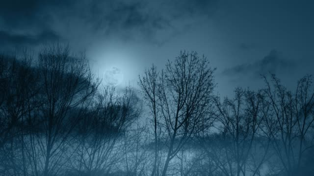 spooky halloween night time-lapse full moon and haunted woods - halloween background filmów i materiałów b-roll