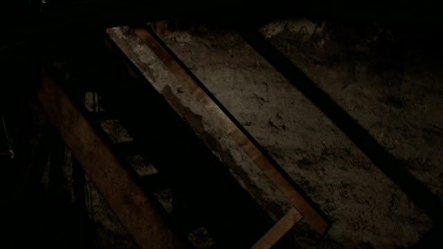 spooky walk in the basement. video
