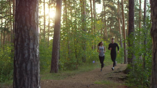 Sportiga par som springer i skogen på morgonen video