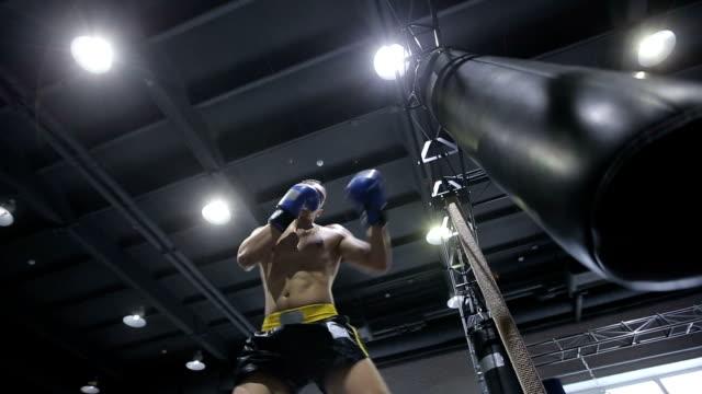 vídeos de stock, filmes e b-roll de esportes : homem está jogando em um pontapé boxe academia de ginástica - autodefesa