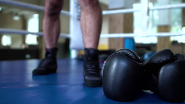 Sportsman take boxing gloves in hands video