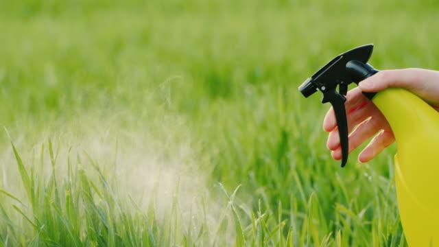 vidéos et rushes de spray avec pelouse verte liquide - herbicide