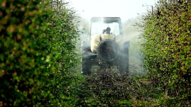 spruta sprutar äppel träd gård - fruktträdgård bildbanksvideor och videomaterial från bakom kulisserna