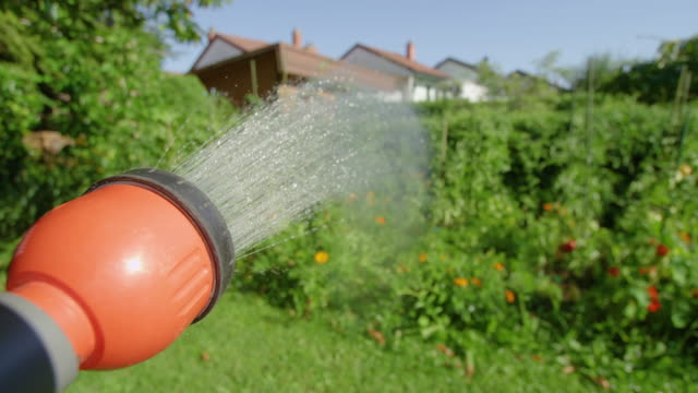 pov: spraying refreshing water over tomatoes and peppers growing in the garden - tubo flessibile video stock e b–roll