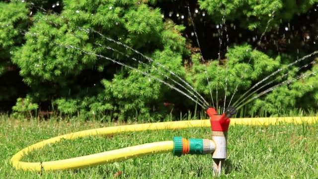 Pulvérisation d'eau sur l'arrière-cour VERT HERBE - Vidéo