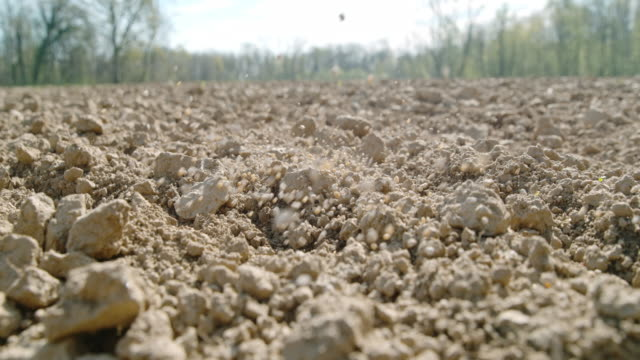 slo mo spargere fertilizzante su un campo - fertilizzante video stock e b–roll