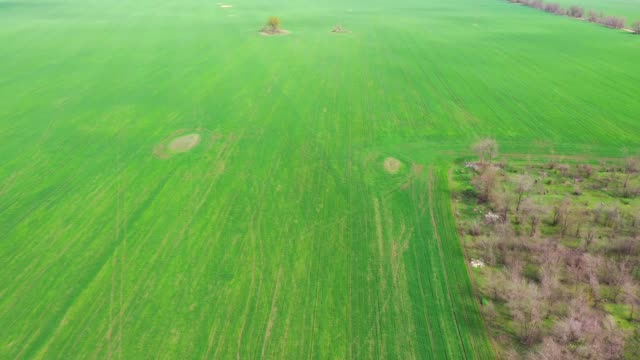 Spring agricultural field aerial view Spring agricultural field aerial view agricultural occupation stock videos & royalty-free footage