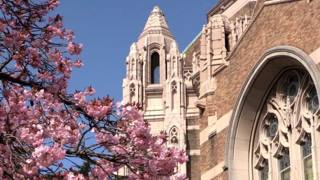 Spring at University of Washington