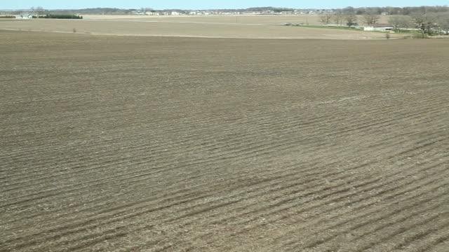 Spring Cornfield und Pflanzen Schwenken Luft Crane Shot – Video
