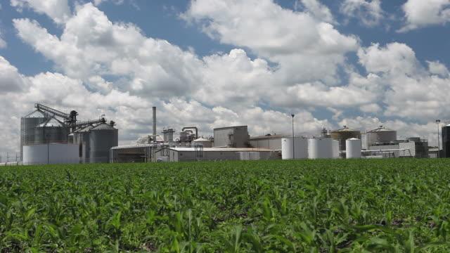 Spring Cornfield mit Ethanol Plant im Hintergrund – Video