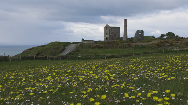 spring, flowers and cloudy sky. Tankardstown. Copper Coast Geopark