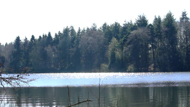 Spring Lake video